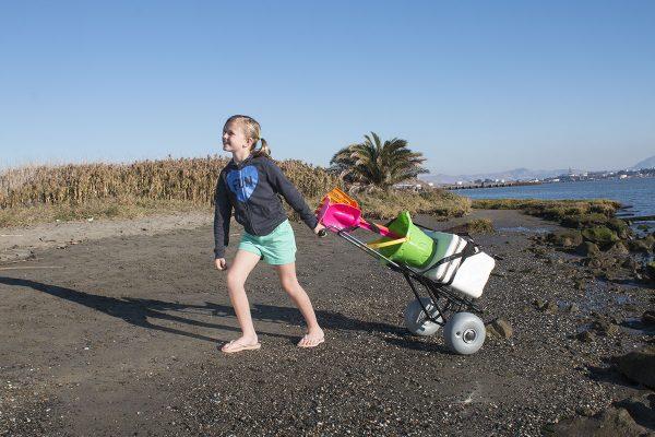 Rueda Globo Mini carrito de playa plegable3